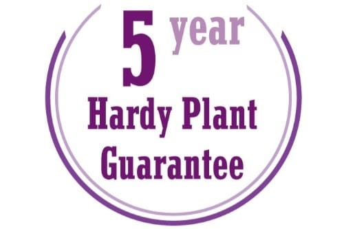 5-Year-hardy-Plant-Guarantee-2 for website