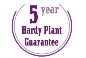 5-year-plant-guarantee