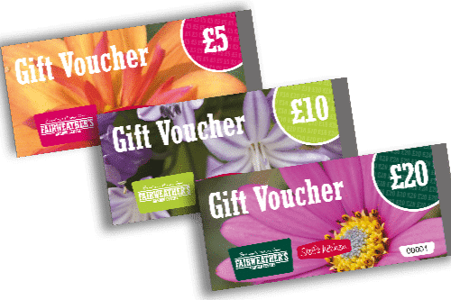 gift vouchers for website
