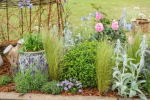 BBC Gardeners World Live 2019 Beautiful Borders Flower Pod Time Out Border by Nicola Twidale Silver award